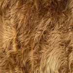 brown fur fabric