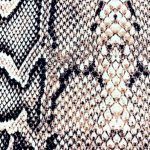 DTY Brushed Snake Print 1